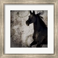 Gypsy Horse Collection V1 1 Fine Art Print