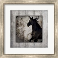 Gypsy Horse Collection V1 8 Fine Art Print