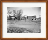 1920s Rural Farmhouse Farm Barn And Barnyard Fine Art Print