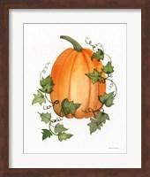 Pumpkin and Vines IV Fine Art Print