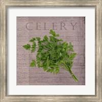 Classic Herbs Celery Fine Art Print
