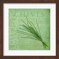 Classic Herbs Chives Fine Art Print