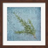 Classic Herbs Rosemary Fine Art Print