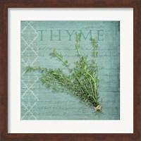 Classic Herbs Thyme Fine Art Print