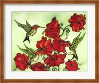 Three Humming Birds Fine Art Print