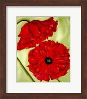 Two Poppies Fine Art Print