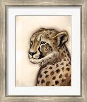 Cheetah Portrait Fine Art Print