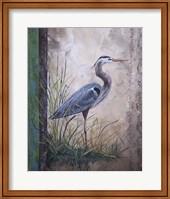 In The Reeds - Blue Heron Fine Art Print