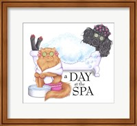 Spa Poodle Persian Fine Art Print