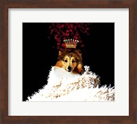 Royal Love Pup - Sheltie Fine Art Print