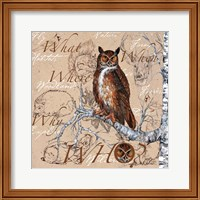 Owl In The Wildnerness Fine Art Print
