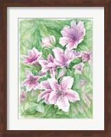 Pink Azaleas Watercolor Fine Art Print