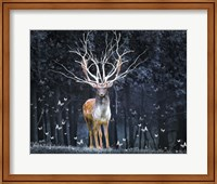 Magical Deer Fine Art Print
