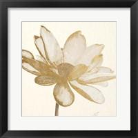 Vintage Lotus Cream I Fine Art Print