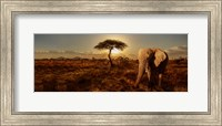 Elephant and Tree Fine Art Print