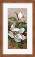 Magnolia Accents II Fine Art Print