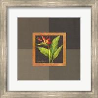Tropical Treasures II Fine Art Print
