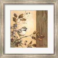 Chickadee Square I Fine Art Print