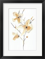 Morning Glory I Fine Art Print