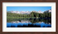 The Indian Peaks reflected in Red Rock Lake Boulder Colorado Fine Art Print