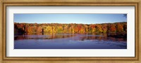 Reflection of Trees and Plants in Water, Bergen County, New Jersey Fine Art Print