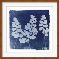 Flora Cyanotype II Fine Art Print