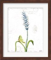 Spring Fields III Fine Art Print