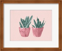Two Pink Fine Art Print