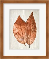Copper Leaves 2 Fine Art Print
