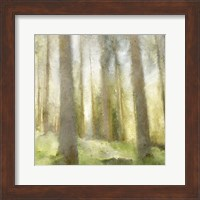 Forest Days Fine Art Print