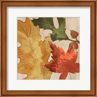 Fall Leaves Square 1 Fine Art Print