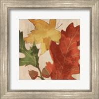 Fall Leaves Square 2 Fine Art Print