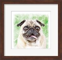 Woof Woof 3 Fine Art Print