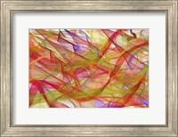 Summer Swirl Fine Art Print