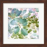 Aquaverde Fine Art Print