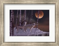 Once in a Super Blue Blood Moon Fine Art Print