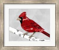 Cardinal Hello White Fine Art Print