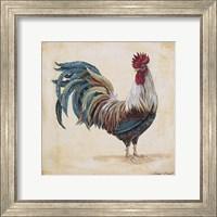 Rooster - F Fine Art Print