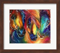 Color My World With Horses Fine Art Print