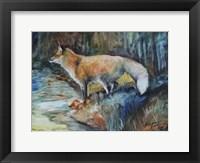 Red Fox II Fine Art Print