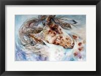 Thunder Appaloosa Indian War Horse Fine Art Print