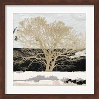 Golden Tree (detail) Fine Art Print