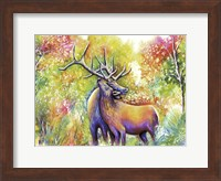 Elk Love Fine Art Print