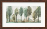Tall Trees Fine Art Print