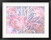 Carnation Creation H Fine Art Print