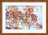 Autumn Leaves 2 Fine Art Print