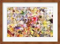 Autumn Leaves 3 Fine Art Print