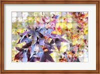 Autumn Leaves 4 Fine Art Print