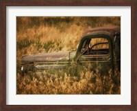 Farm & Field V Fine Art Print