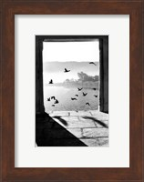 Lac de Pushkar Fine Art Print